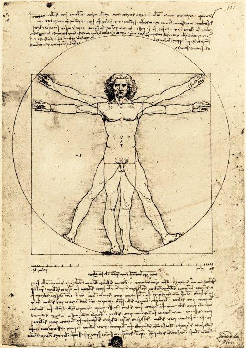 Leonardo da Vinci 'Vitruvian Man' (c.1490)